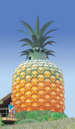 The Big Pineapple - Tourism Bookings