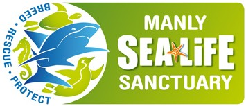 Manly SEA LIFE Sanctuary - Tourism Bookings