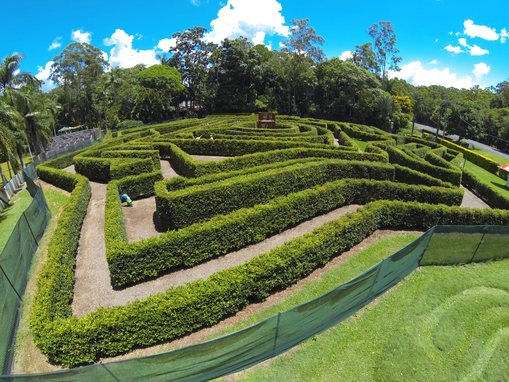 Bellingham Maze - Tourism Bookings