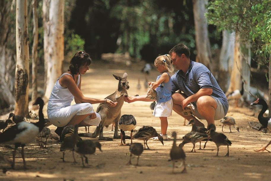 Billabong Sanctuary - Tourism Bookings